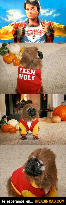 Disfraces perrunos: Teen Wolf
