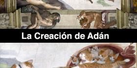 La creación de Adán versión gatuna