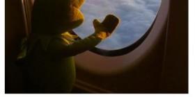 Primer viaje en avión de Gustavo