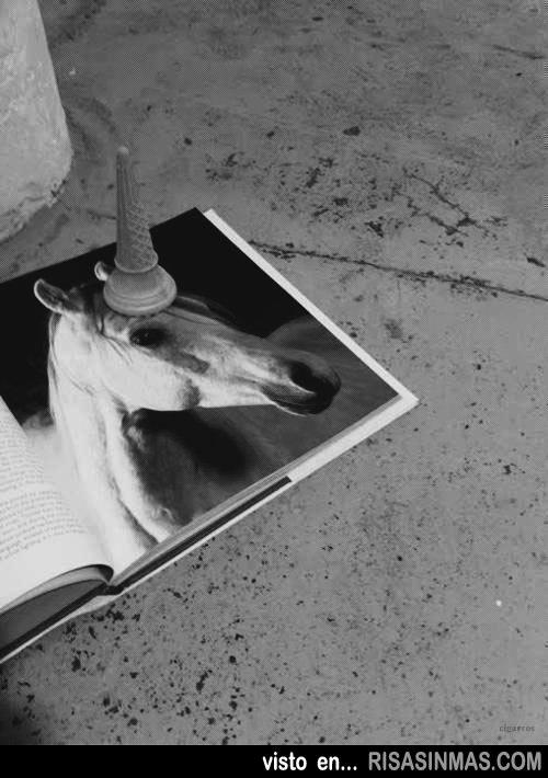 Fotografía que demuestra la existencia de los unicornios