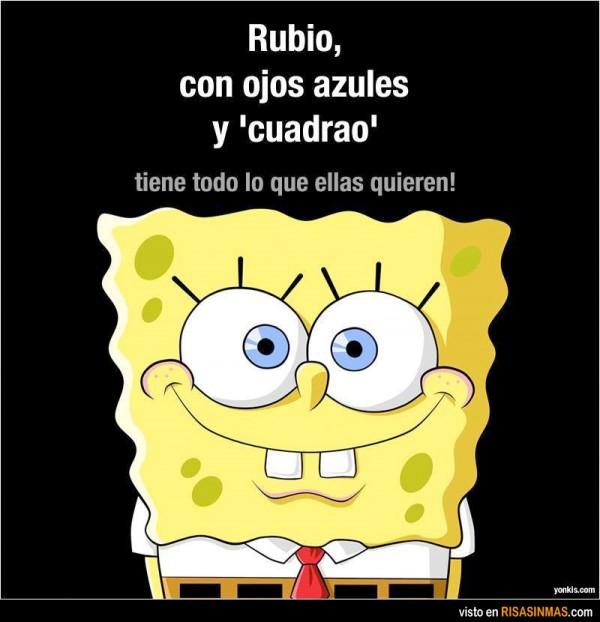 Rubio, ojos azules y cuadrao