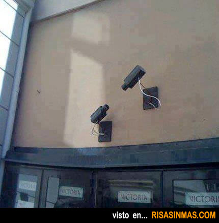 Vigilancia vigilada