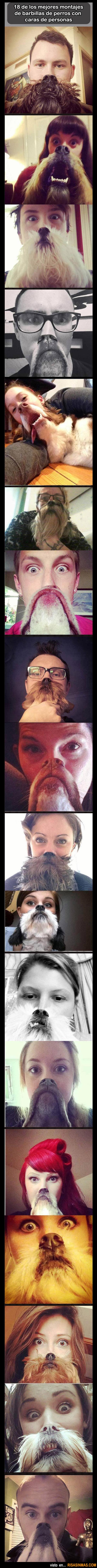 Caras de personas con barbillas de perros
