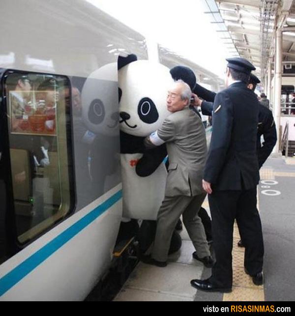 Mientras tanto en Japón