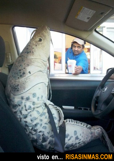 Trabajando y te encuentras una gamba gigante conduciendo