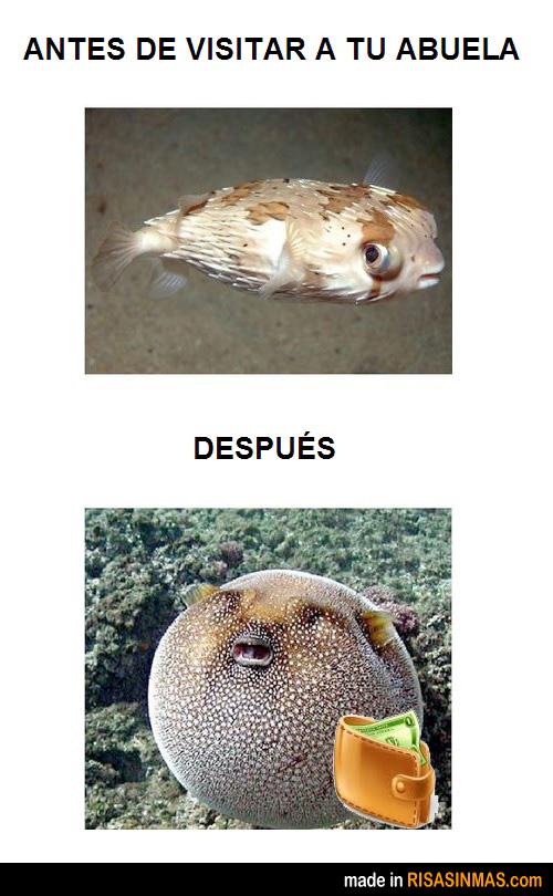 Antes y después de visitar a tu abuela