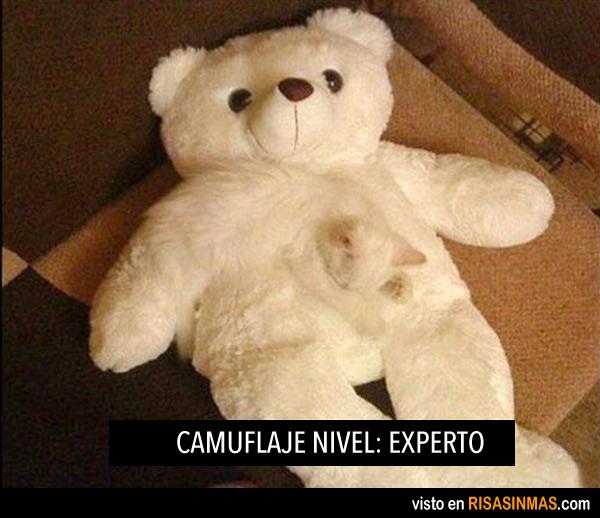 Camuflaje nivel: experto