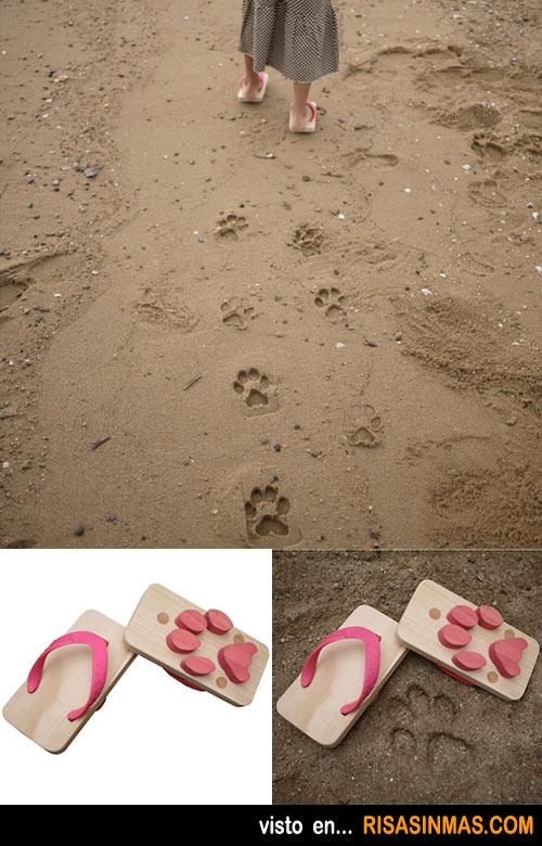 Chancletas con huella de perro