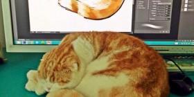 El Photoshop y la modelo