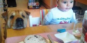 Esperando el desayuno