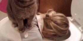 Gato apoyando a su dueña en un mal momento