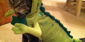 Verás que no es un dinosaurio