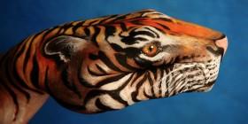 Manos pintadas: Tigre