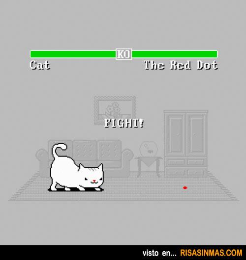 La pelea de los gatos y los puntos rojos