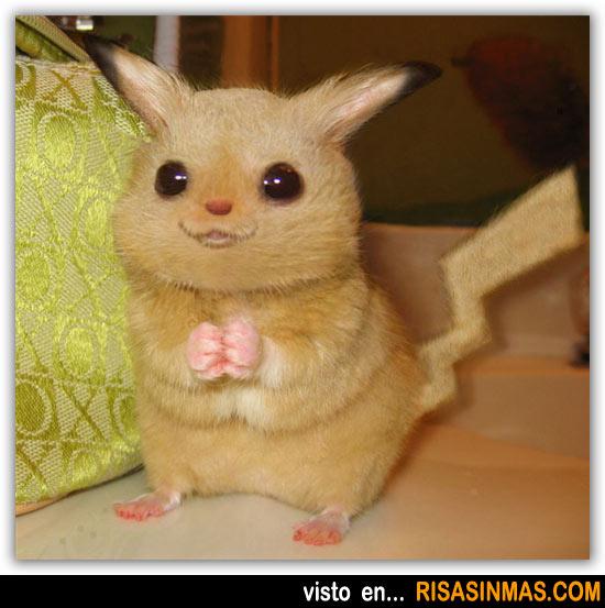Pikachu versión real