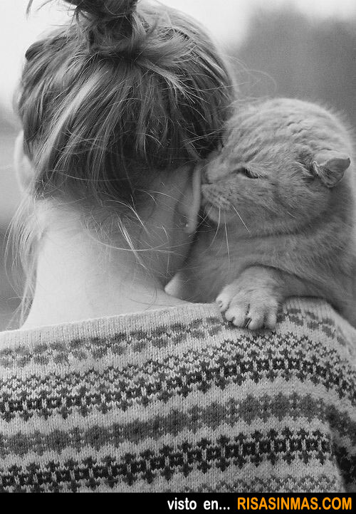 Gato contando secretos