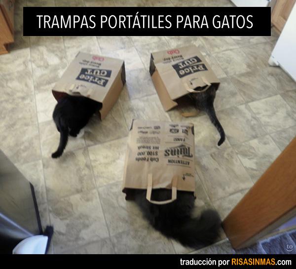 Trampas portátiles para gatos