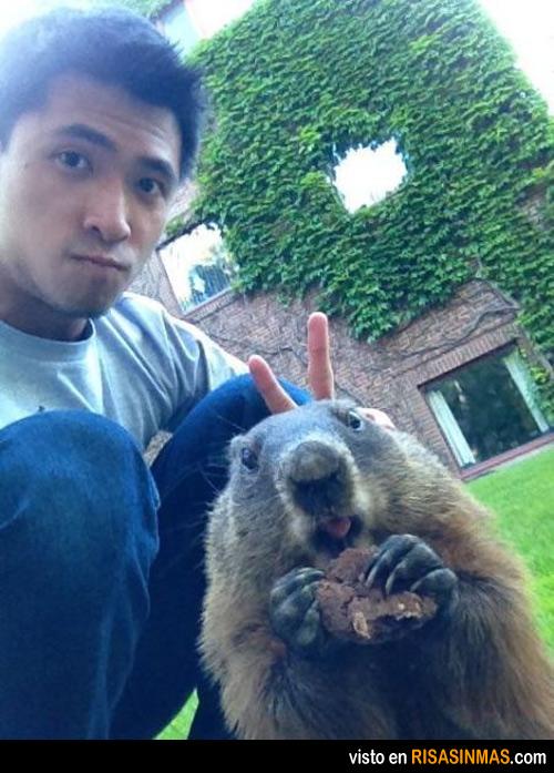 Troleando a una marmota