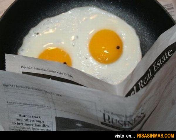 Un huevo leyendo la prensa