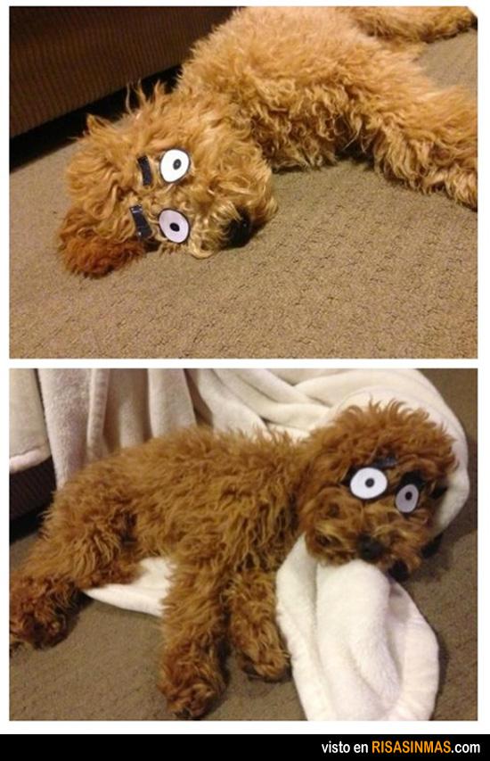 Convierte a tu mascota en un perro de cómic