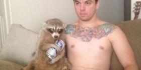 El mapache borracho