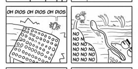 La vida de la mosca común