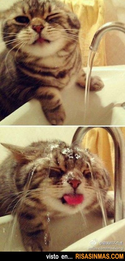 Lavándose la cara por la mañana