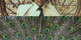 Parecidos razonables: Julio Iglesias y pavo real