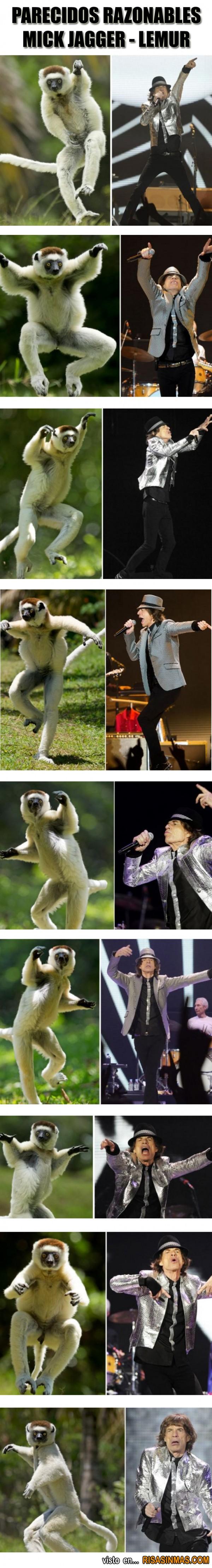 Parecidos razonables: Mick Jagger - Lemur