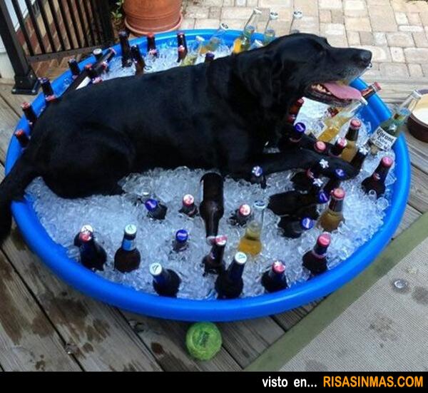 Refréscate en verano