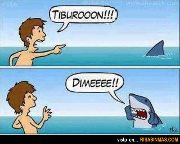 Tiburón educado