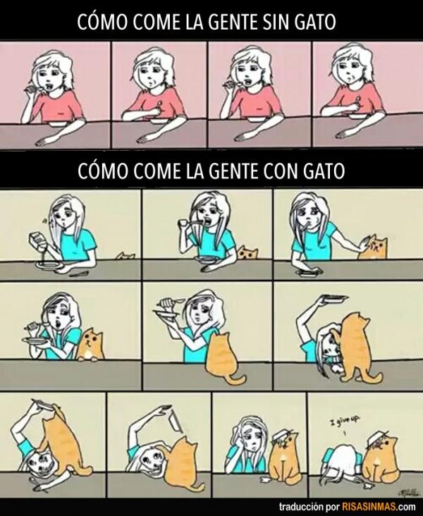Comiendo con un gato