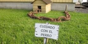 ¡Cuidado con el perro!