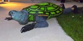Disfraces horribles: tortuga