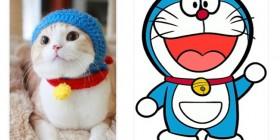El gato de Doraemon existe