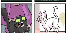 Ser un gato es como estar en un videojuego
