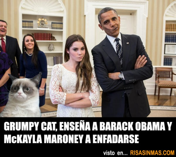 Grumpy Cat enseñando a Obama y Maroney