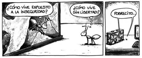 Inseguridad y libertad