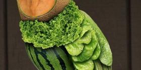 Lechuza vegetariana