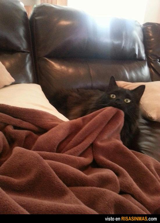 Esta manta es mía