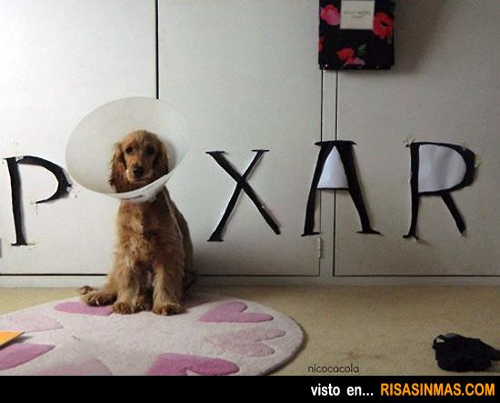 Le ponen un collarín a mi perro y se me ocurre...