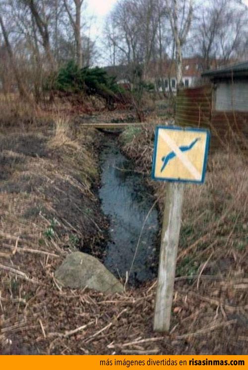 Prohibido lanzarse al agua