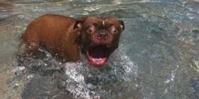 ¡Que fría está el aguaaa!