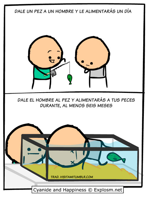 Comida para peces