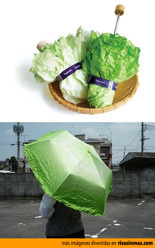 El paraguas lechuga