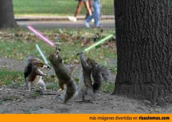 Escuela Jedi
