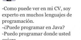Experto en lenguajes de programación