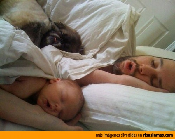 La familia que duerme unida...