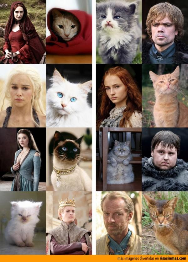 Los personajes de Juego de tronos como gatos