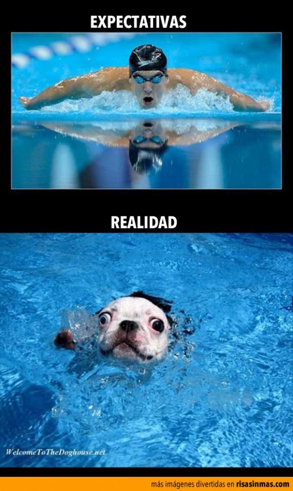 Expectativas y realidad: Nadando